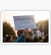 Diversity Trumps Assimilation Sticker