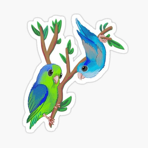 Pacific parrotlets Sticker