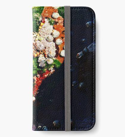 Muscheln und Moos iPhone Flip-Case