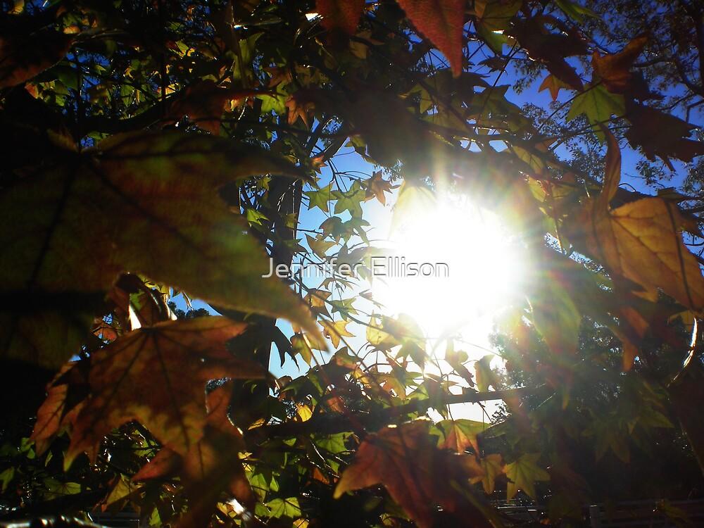 Looking Up by Jennifer Ellison