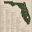 Florida Parks by FinlayMcNevin