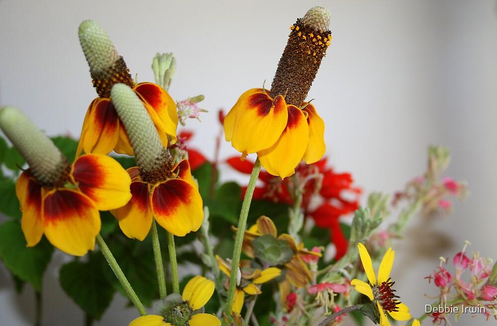 Texas Wildflowers by Debbie Irwin