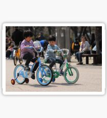 2 Brothers Learning to Ride Bikes (2) Sticker