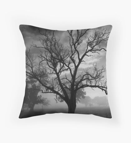 Foggy Morn.. Throw Pillow