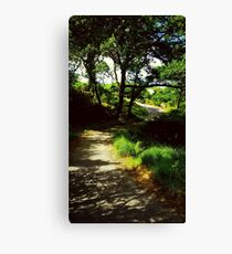 Forrest Walkway Canvas Print
