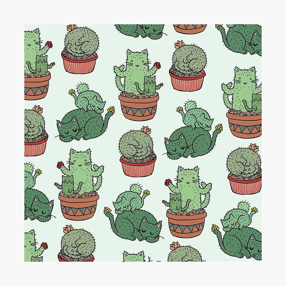 Cactus Cats Photographic Print