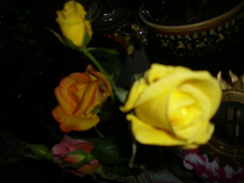Yellow Roses by clou