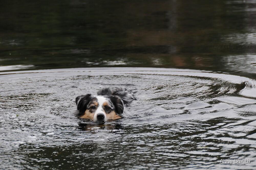 Swimming by Anne Smyth