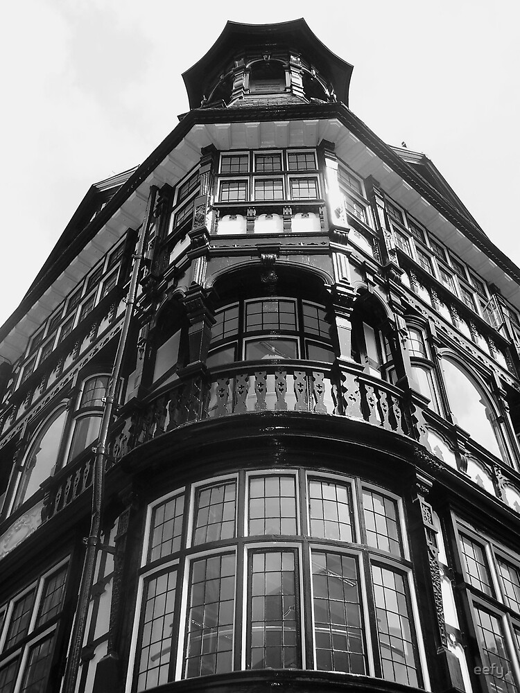 Black and White Building by eefy