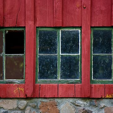 Windows of Weathered Charm by VKPelham
