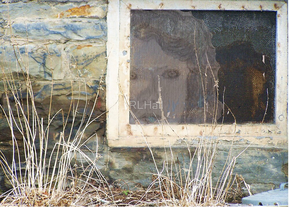 Glimpse of a long Lingering Soul, through an Old Foundation Window by RLHall