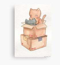 Kitties in a Box Canvas Print