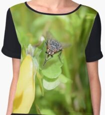 Bluebottle fly on leaf Women's Chiffon Top