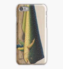Mahi-Mahi Fish artwork iPhone Case/Skin