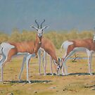 Mhorr gazelle by Brian Towers