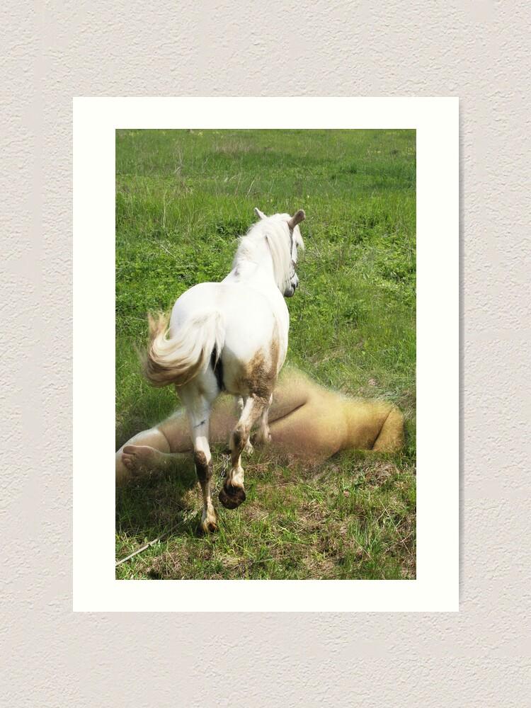 Alternate view of White Horse Art Print
