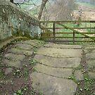 Pack Horse Bridge 1  -  Hunters Sty Bridge by dougie1