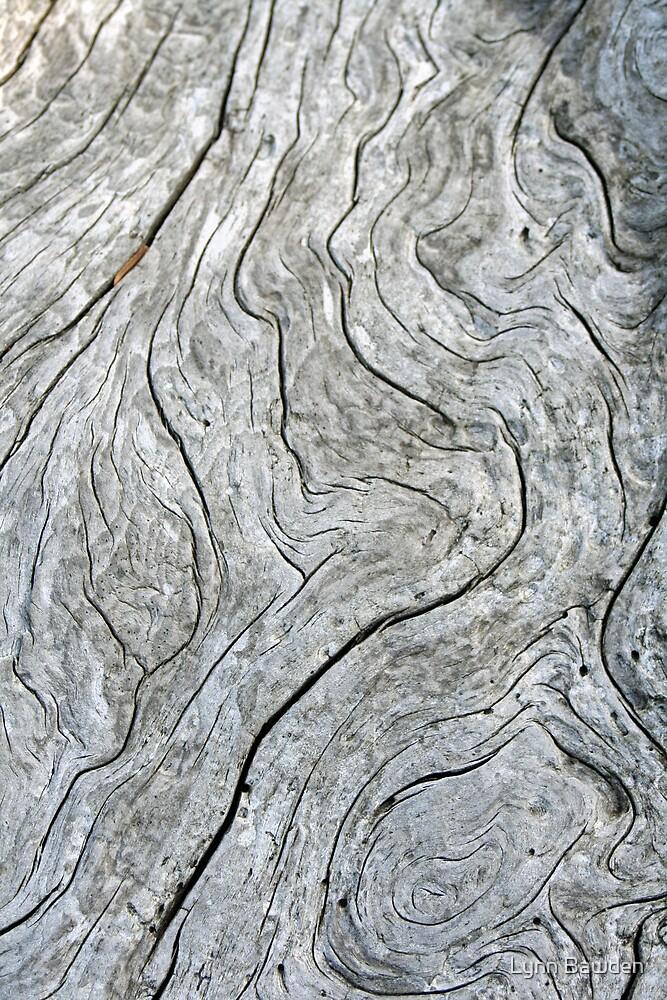 """""""Driftwood Patterns"""" by Lynn Bawden"""