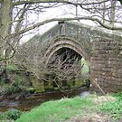 Pack Horse Bridge 4 by dougie1