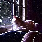 Little Lucy in the Moonlight by hickerson