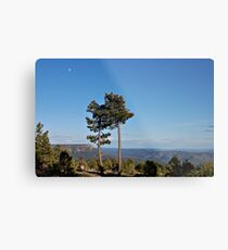 Arizona Rim Metal Print