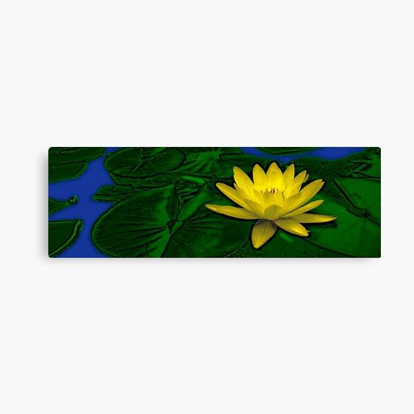 Golden Lotus Canvas Print
