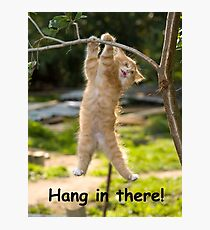 Hang in There Cat Poster - Perfect Funny Motivational Poster For Home or Office - Humorous Decor, Funny Quote Photographic Print