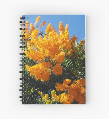 Nuytsia Orange Spiral Notebook
