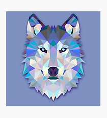 Wolf Animals Gift Photographic Print