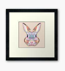 Rabbit Hare Animals Gift Framed Print