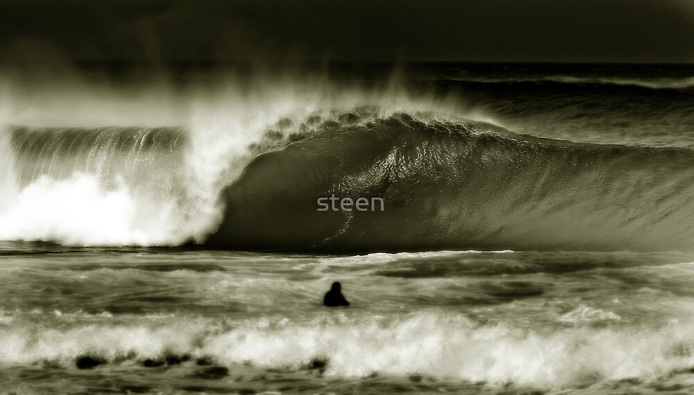 power of one by steen