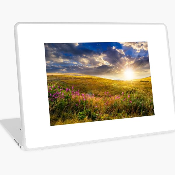 wild flowers on the mountain top at sunset Laptop Skin