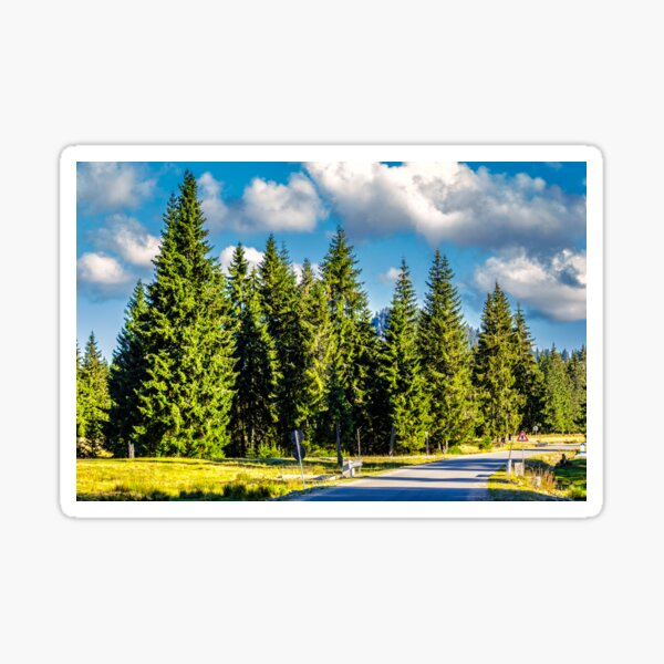 mountain road in autumn forest Sticker