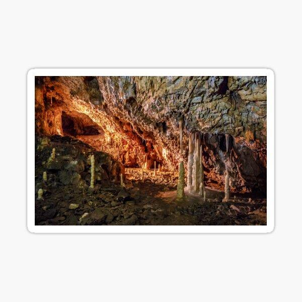 Ursus spelaeus cave in romanian mountains transilvania Sticker