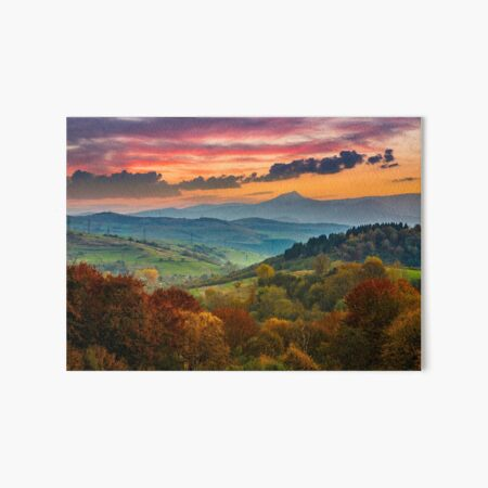 autumn forest on a  mountain hill at sunset Art Board Print