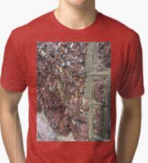 Sea Wall Torquay Tri-blend T-Shirt
