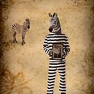 The man who fled to Africa by Kurt  Tutschek