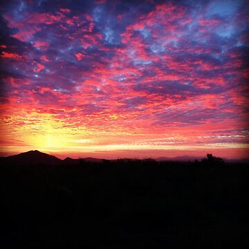 Baja Sunrise by nativeminnow
