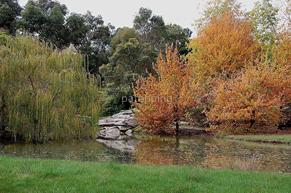 Colors of Autumn, Adelaide Hills S.A by patapping