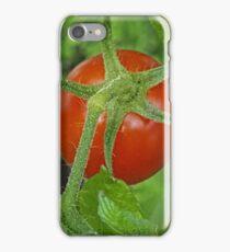 A container garden's fruit iPhone Case/Skin