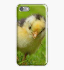 Chicken Licken iPhone Case/Skin