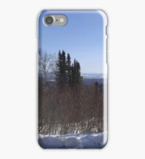 Trees in the Spring II iPhone Case/Skin