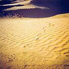Fort in the Sahara desert by Silvia Ganora
