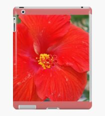 Hibiscous II Chicago IL Mag Mile If you like, purchase, try a cell phone cover thanks! iPad Case/Skin