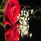 A rose for a rose by Dawn B Davies-McIninch