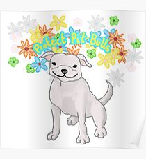 Protect Pit Bulls Poster