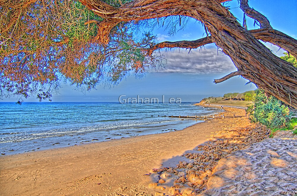 Autumn in Torquay by Graham Lea