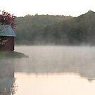 Misty Morn by Donna Sherwood