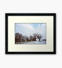 A Walk in Winter Framed Print