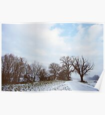 A Walk in Winter Poster